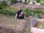 Aktivitet på koloniträdgården