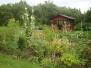 Säby koloniträdgård